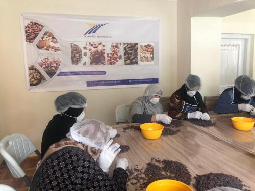 Women at work in the NNL Processing Center